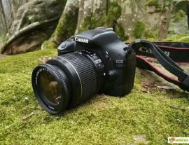 Rent, Photo-Video equipment rental